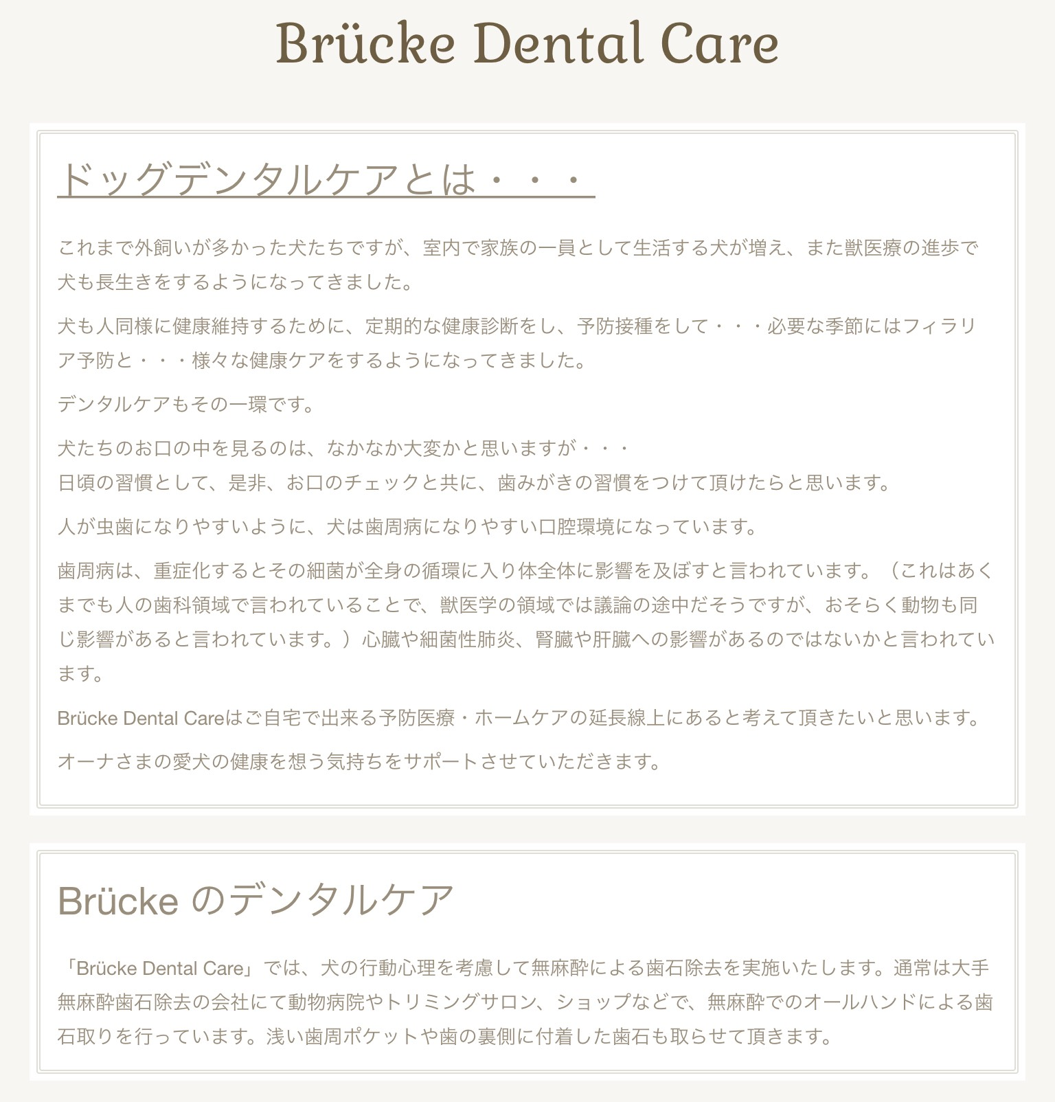 Brucke Dental Care